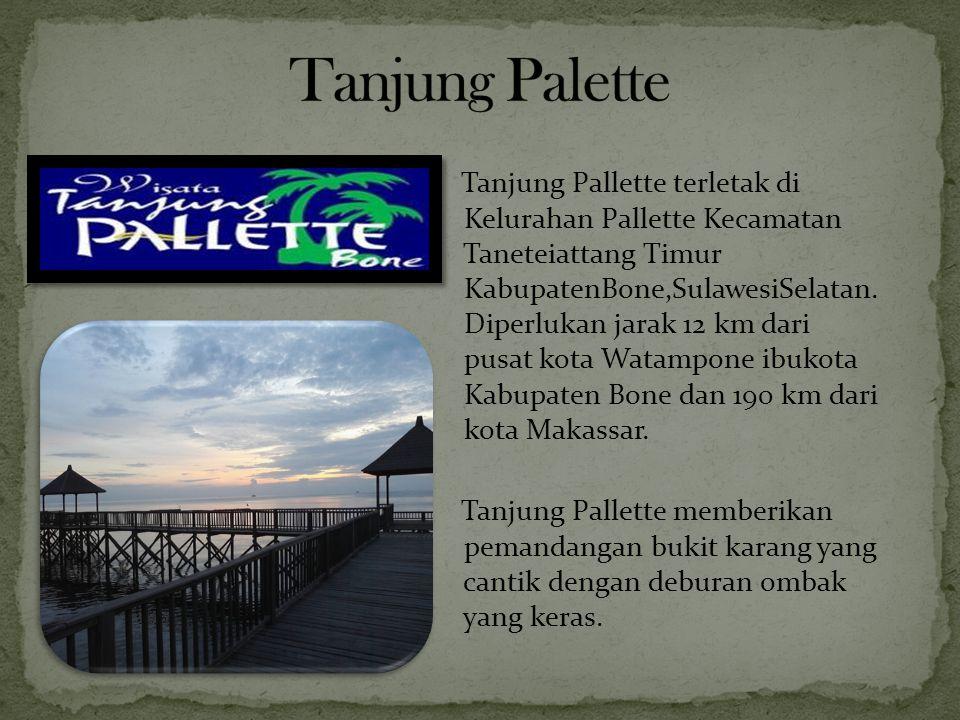 Tanjung Palette