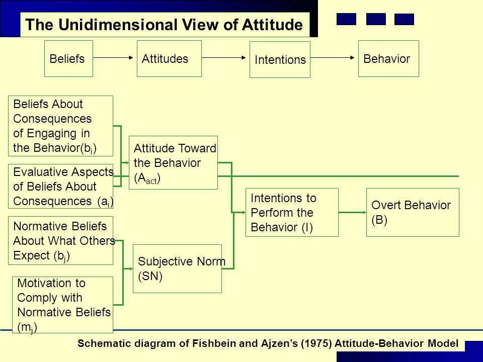The Unidimensional View of Attitude