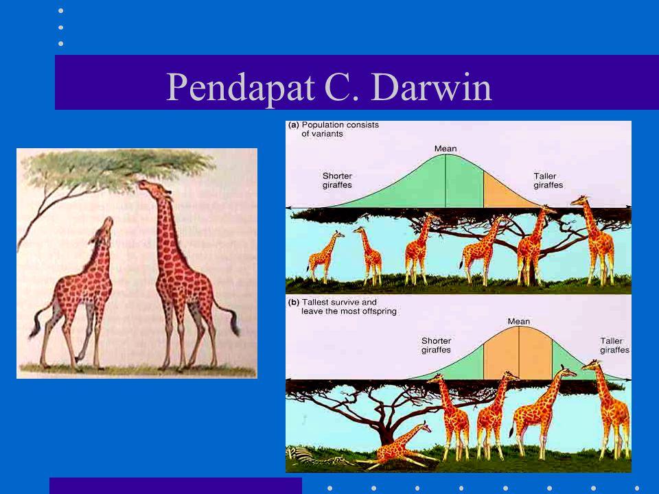 Pendapat C. Darwin