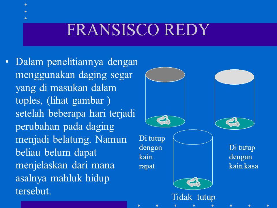 FRANSISCO REDY