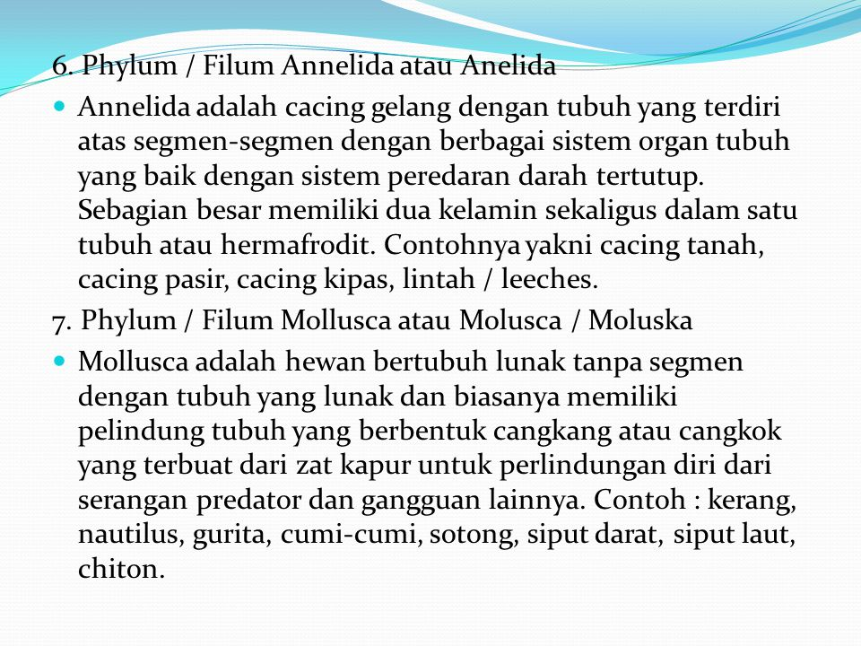 6. Phylum / Filum Annelida atau Anelida