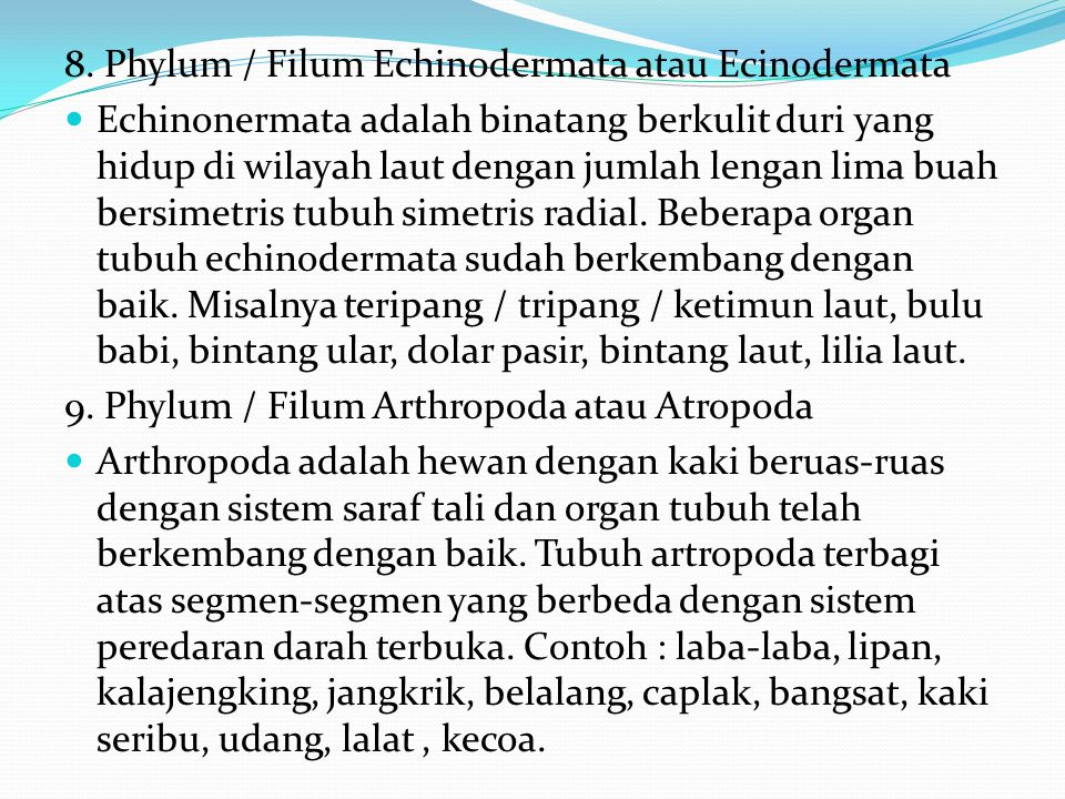 8. Phylum / Filum Echinodermata atau Ecinodermata