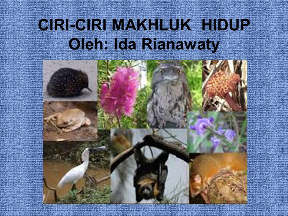 CIRI-CIRI MAKHLUK HIDUP Oleh: Ida Rianawaty