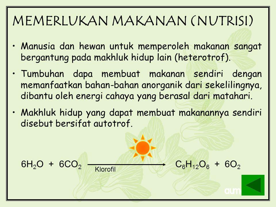 MEMERLUKAN MAKANAN (NUTRISI)