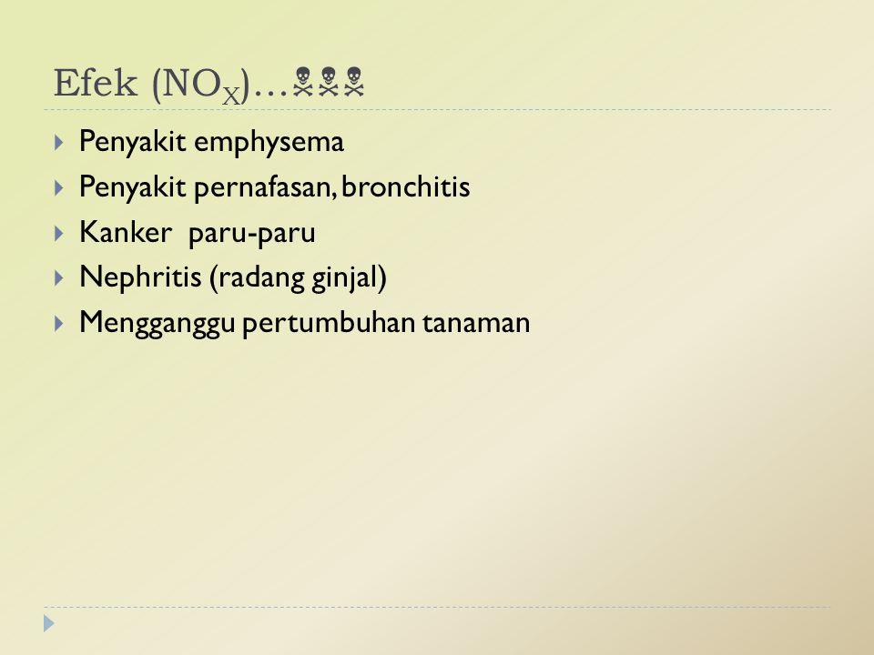 Efek (NOX)... Penyakit emphysema Penyakit pernafasan, bronchitis