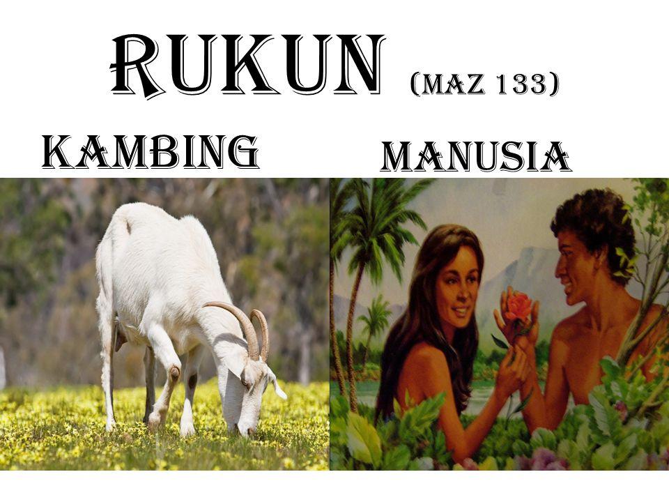 RUKUN (maz 133) Kambing Manusia