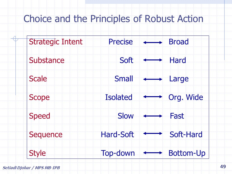 Choice and the Principles of Robust Action