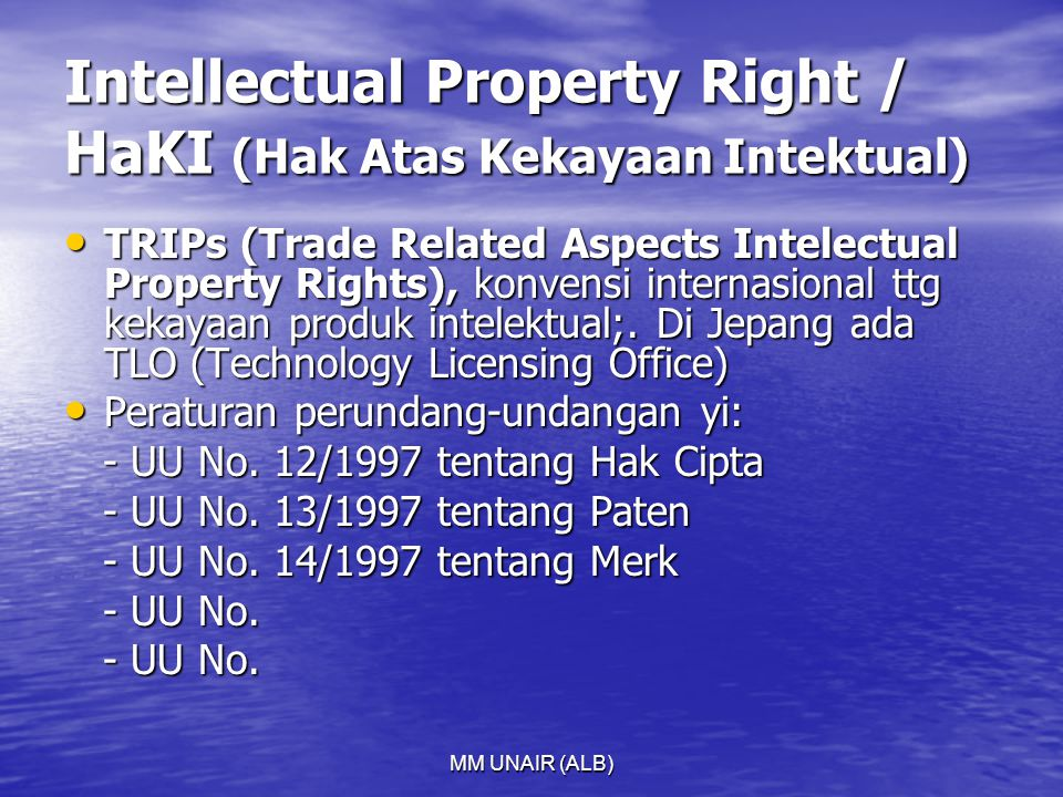 Intellectual Property Right / HaKI (Hak Atas Kekayaan Intektual)