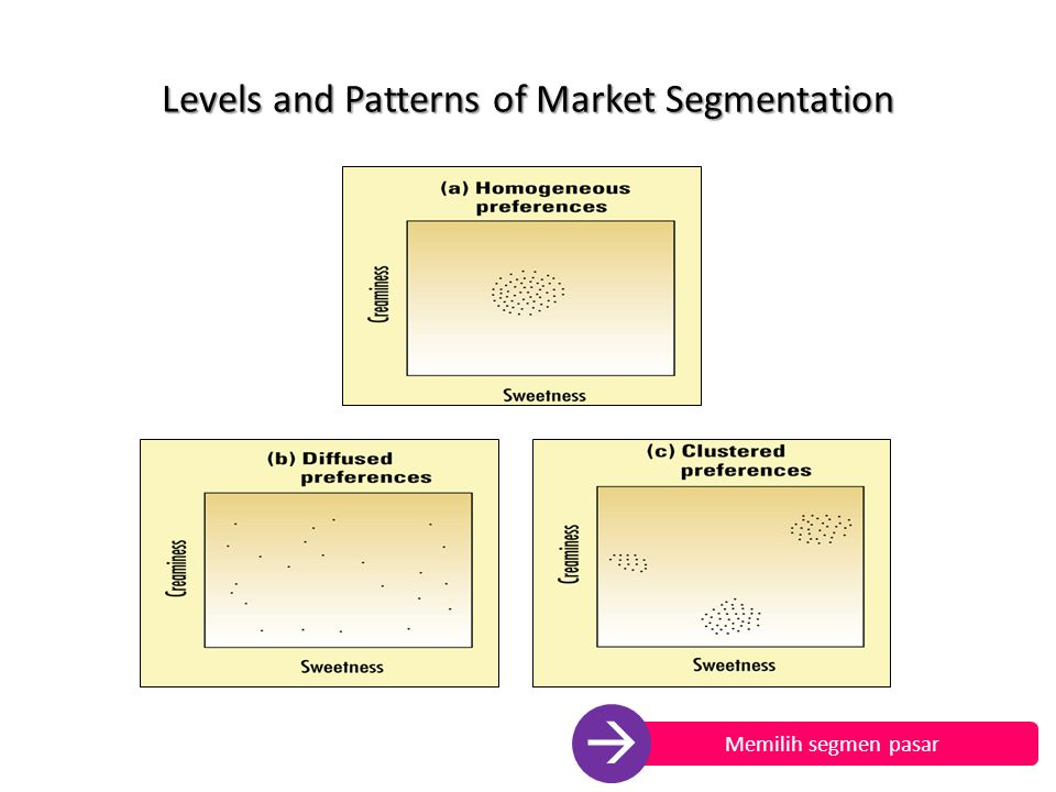 Levels and Patterns of Market Segmentation