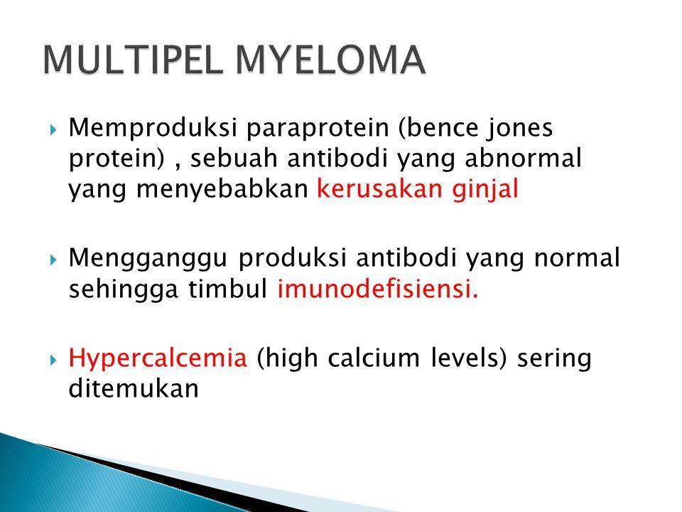 MULTIPEL MYELOMA Memproduksi paraprotein (bence jones protein) , sebuah antibodi yang abnormal yang menyebabkan kerusakan ginjal.