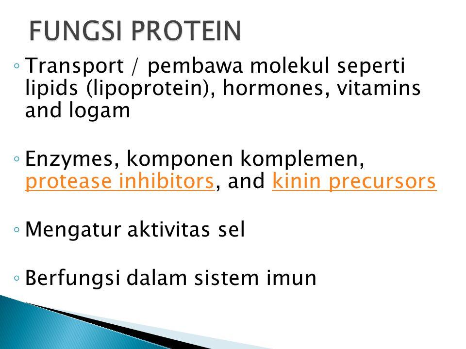 FUNGSI PROTEIN Transport / pembawa molekul seperti lipids (lipoprotein), hormones, vitamins and logam.