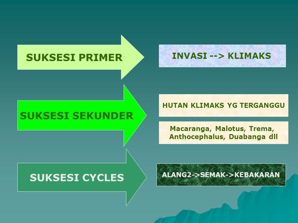 SUKSESI PRIMER SUKSESI SEKUNDER SUKSESI CYCLES