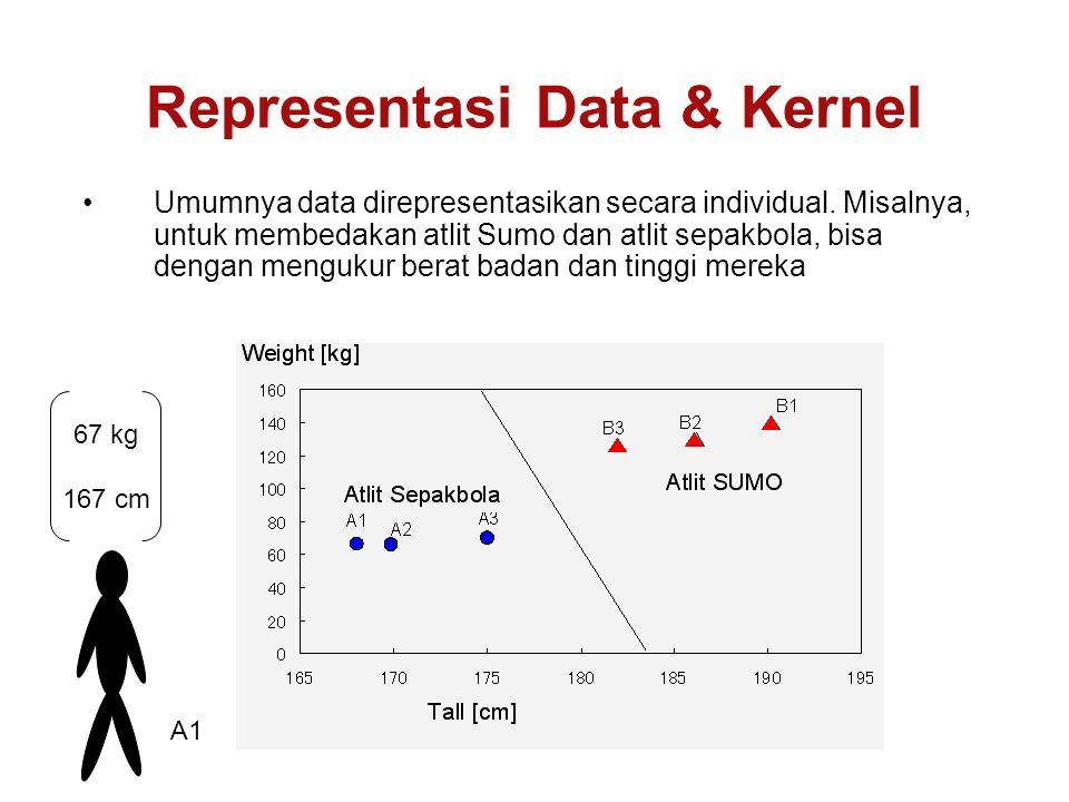 Representasi Data & Kernel