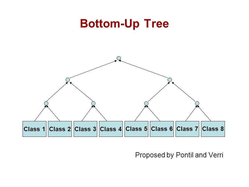 Bottom-Up Tree Proposed by Pontil and Verri Class 1 Class 2 Class 3