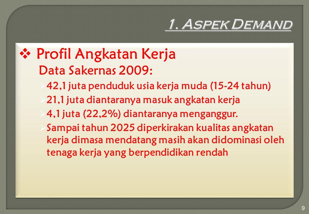 Profil Angkatan Kerja 1. Aspek Demand Data Sakernas 2009: