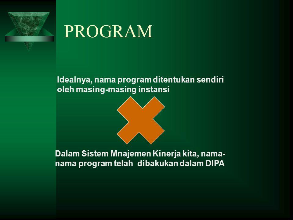 PROGRAM Idealnya, nama program ditentukan sendiri oleh masing-masing instansi.
