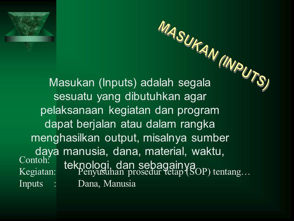 MASUKAN (INPUTS)