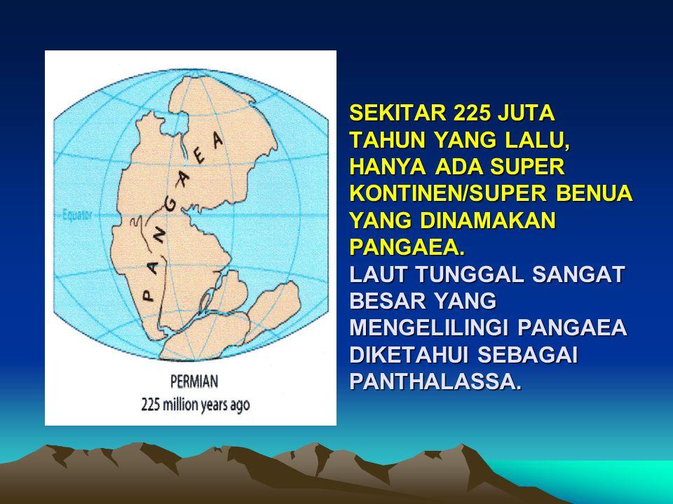Sekitar 225 juta tahun yang lalu, hanya ada super kontinen/super benua yang dinamakan Pangaea.