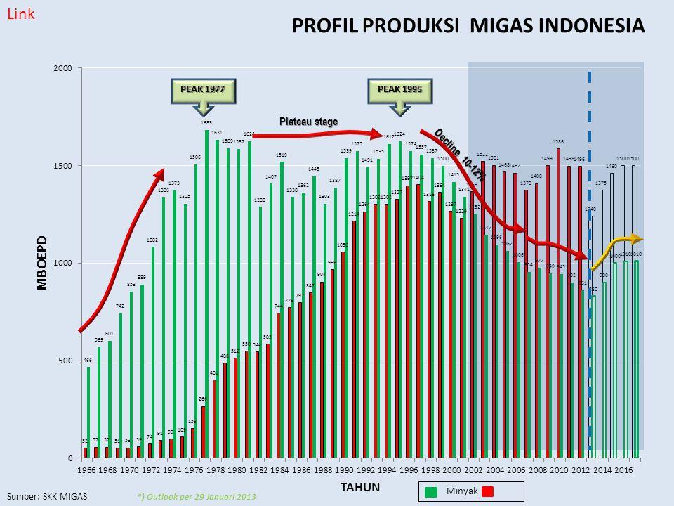 PROFIL PRODUKSI MIGAS INDONESIA