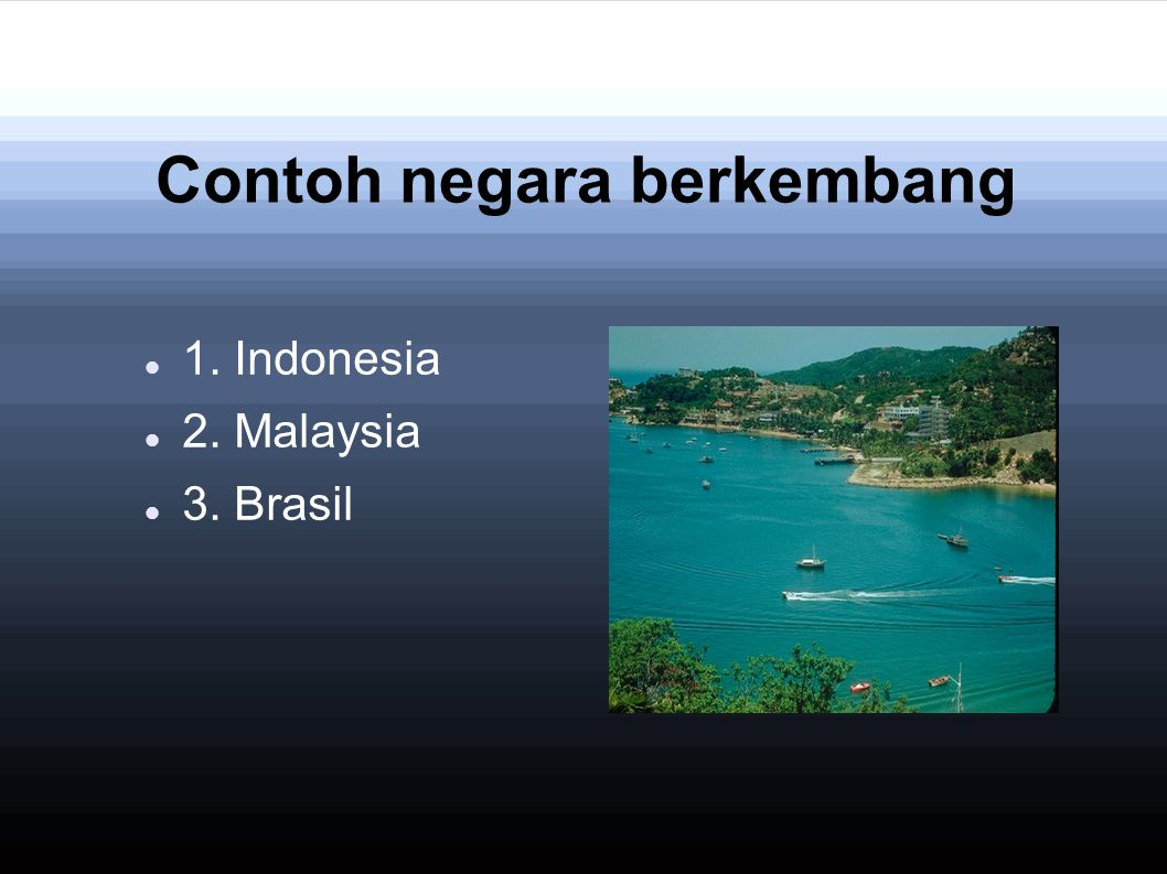 Contoh negara berkembang