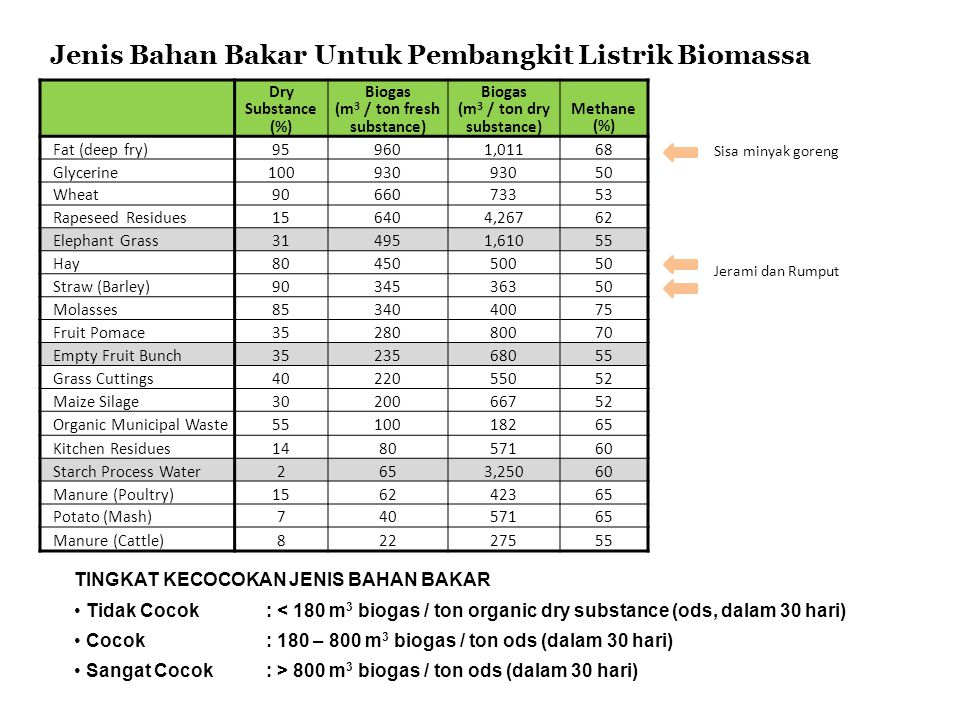 Jenis Bahan Bakar Untuk Pembangkit Listrik Biomassa