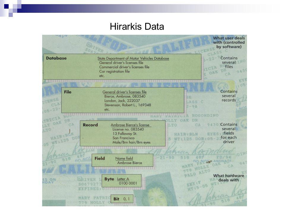 Hirarkis Data