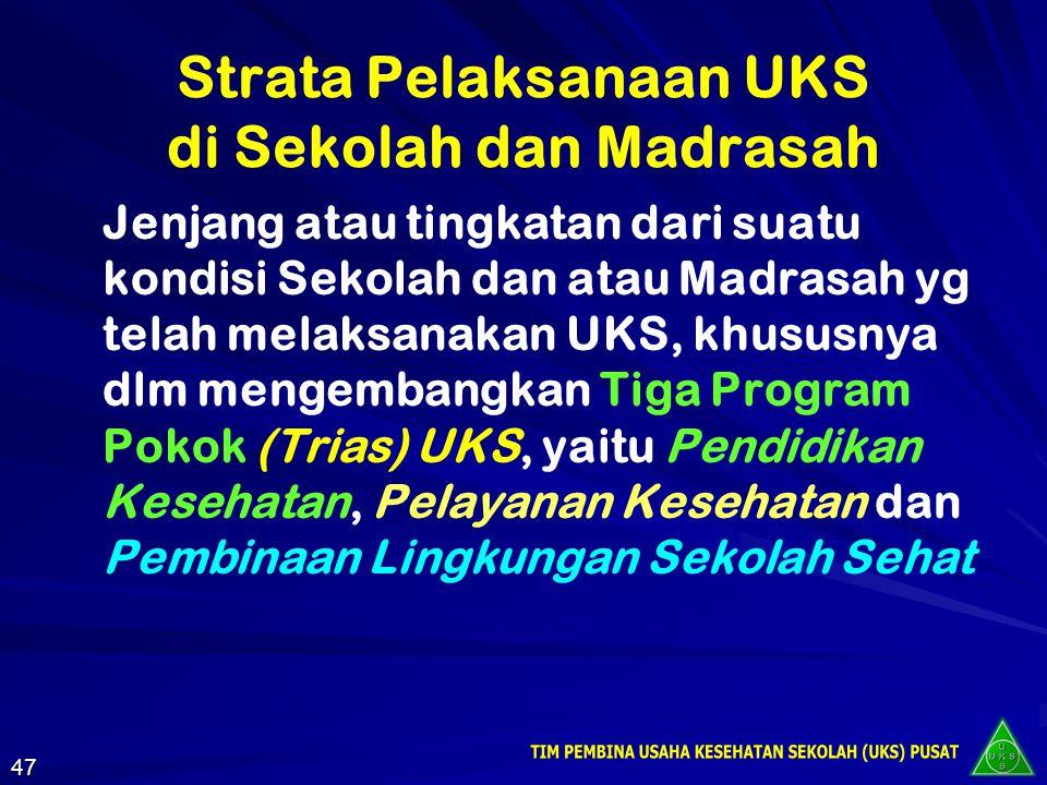Strata Pelaksanaan UKS di Sekolah dan Madrasah