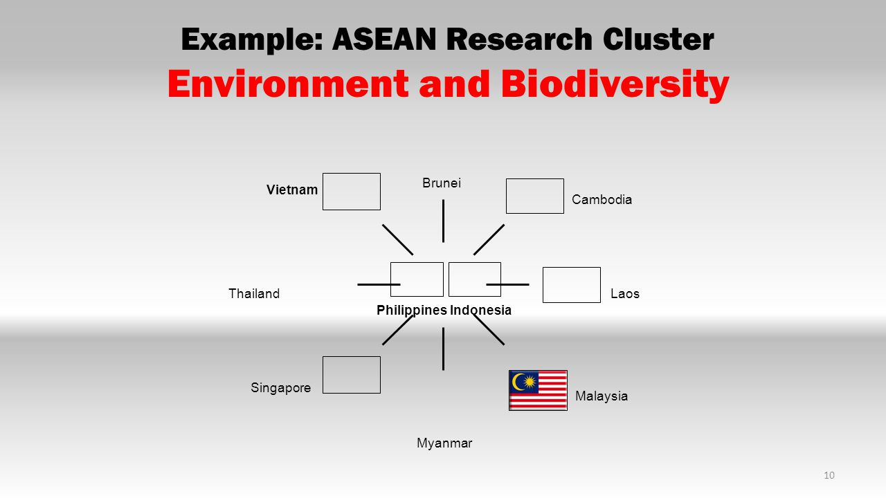 Example: ASEAN Research Cluster Environment and Biodiversity