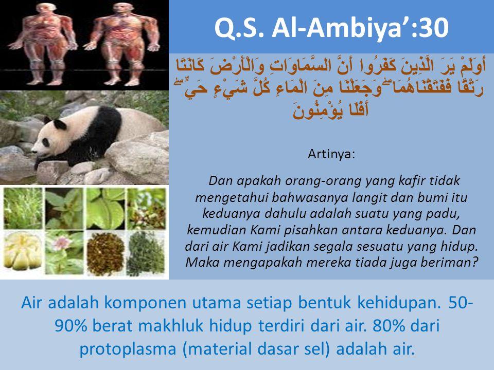 Q.S. Al-Ambiya':30