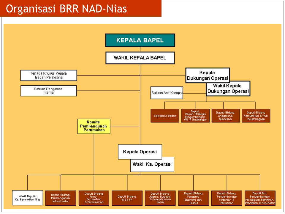 Organisasi BRR NAD-Nias