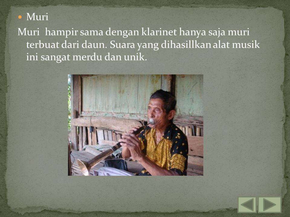 Muri Muri hampir sama dengan klarinet hanya saja muri terbuat dari daun.