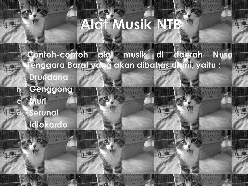 Alat Musik NTB Contoh-contoh alat musik di daerah Nusa Tenggara Barat yang akan dibahas disini, yaitu :
