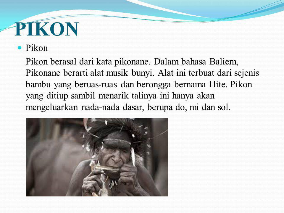 PIKON Pikon.