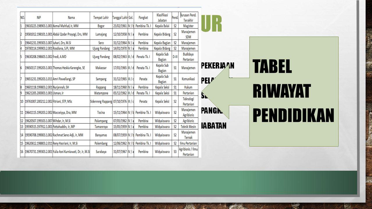 Elemen infrastruktur TABEL RIWAYAT PENDIDIKAN Pembuatan tabel