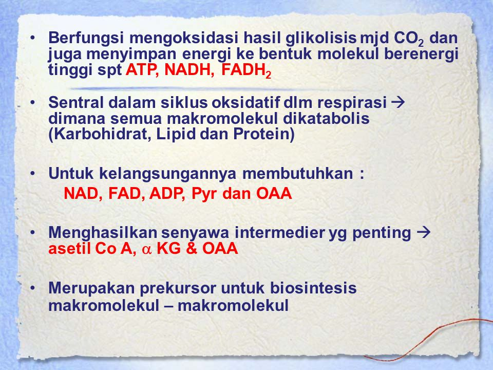 Berfungsi mengoksidasi hasil glikolisis mjd CO2 dan juga menyimpan energi ke bentuk molekul berenergi tinggi spt ATP, NADH, FADH2