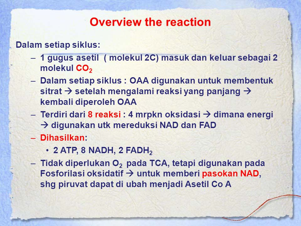 Overview the reaction Dalam setiap siklus: