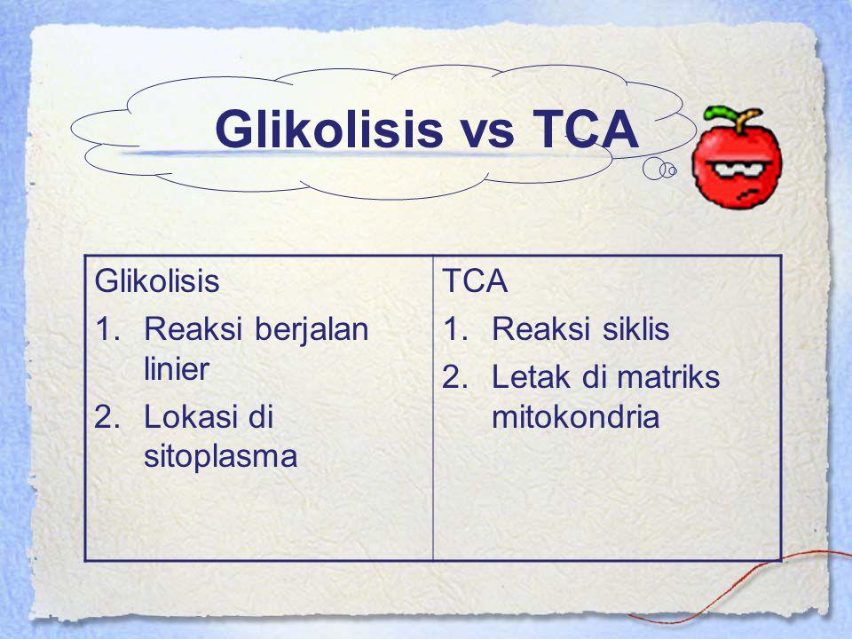 Glikolisis vs TCA Glikolisis Reaksi berjalan linier