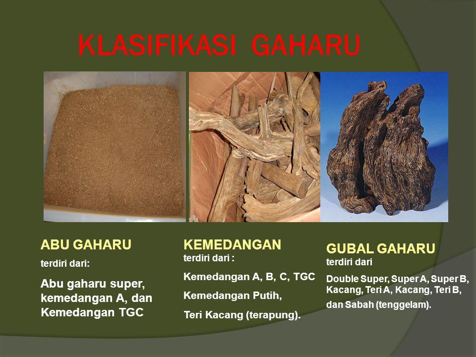 KLASIFIKASI GAHARU ABU GAHARU KEMEDANGAN terdiri dari :