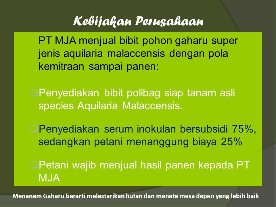 Kebijakan Perusahaan PT MJA menjual bibit pohon gaharu super jenis aquilaria malaccensis dengan pola kemitraan sampai panen: