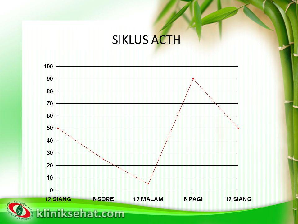 SIKLUS ACTH