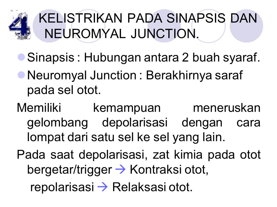 KELISTRIKAN PADA SINAPSIS DAN NEUROMYAL JUNCTION.
