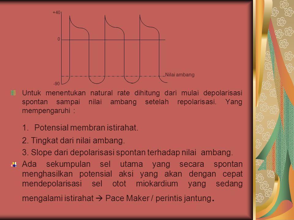 1. Potensial membran istirahat.