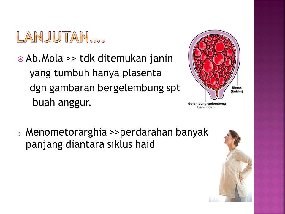 Lanjutan…. Ab.Mola >> tdk ditemukan janin