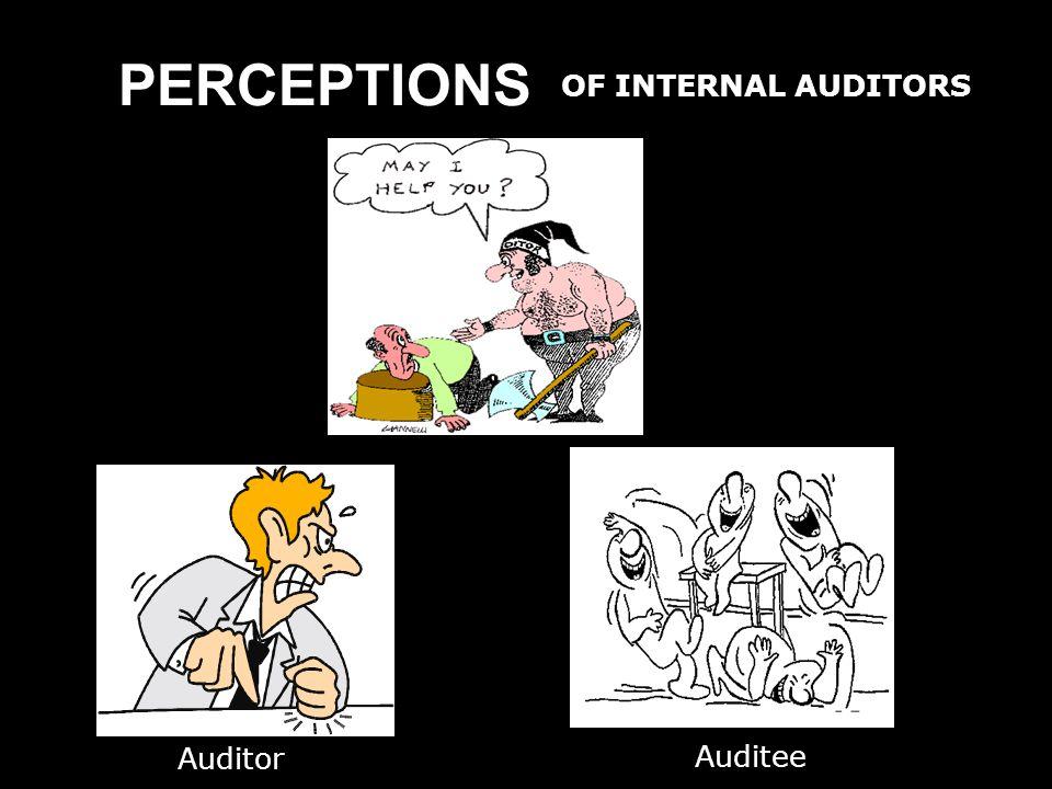 PERCEPTIONS OF INTERNAL AUDITORS Auditor Auditee