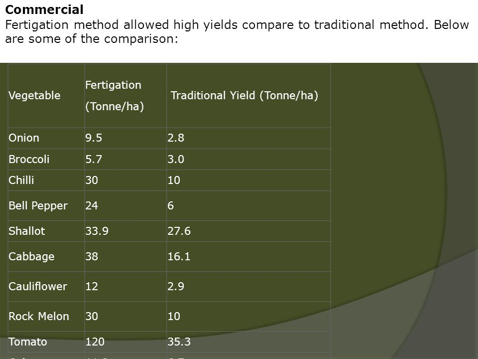 Commercial Fertigation method allowed high yields compare to traditional method. Below are some of the comparison: