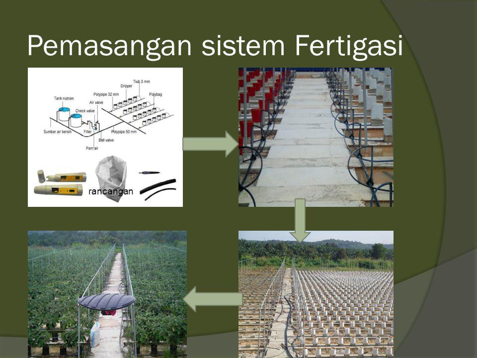 Pemasangan sistem Fertigasi