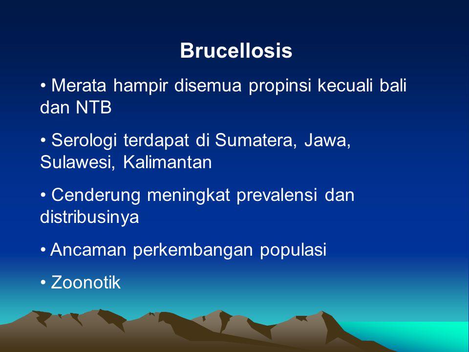 Brucellosis Merata hampir disemua propinsi kecuali bali dan NTB