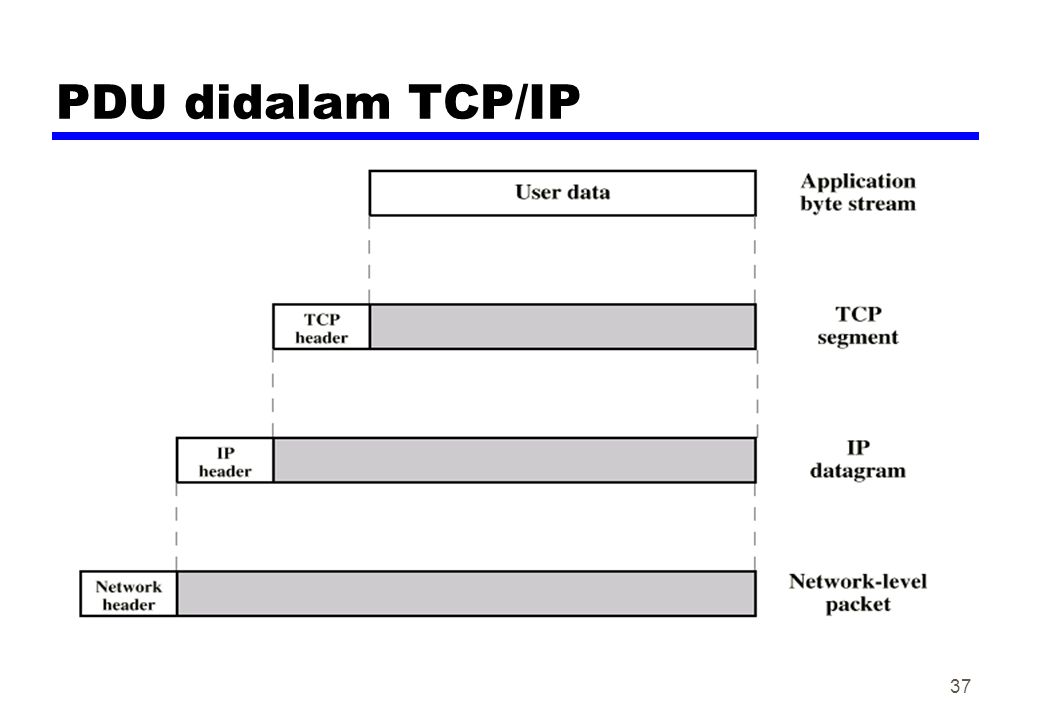 PDU didalam TCP/IP
