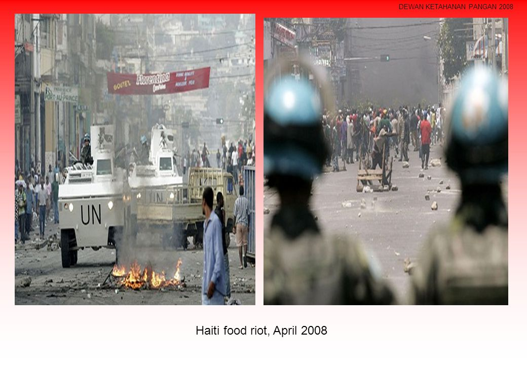 Haiti food riot, April 2008