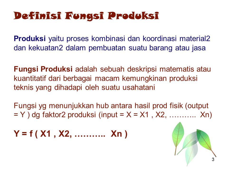 Definisi Fungsi Produksi